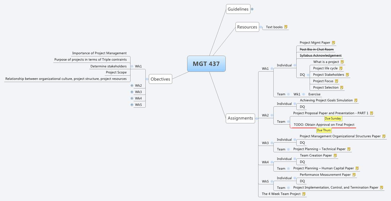 mgt 437 achieving project goals simulation