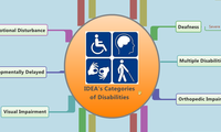 IDEA's Categories   of Disabilities