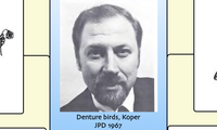 Denture birds, Koper JPD 1967
