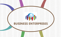 BUSINESS ENTERPRISES