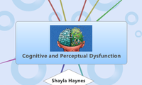 Cognitive and Perceptual Dysfunction