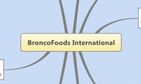 BroncoFoods International