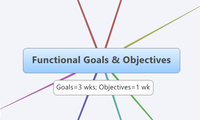 Functional Goals & Objectives