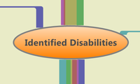 Identified Disabilities