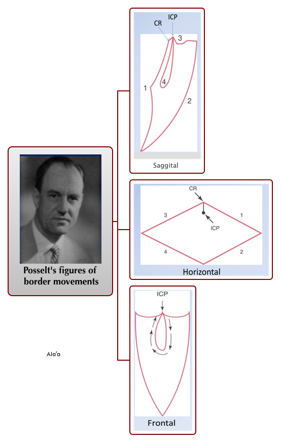 Posselt's figures of border movements