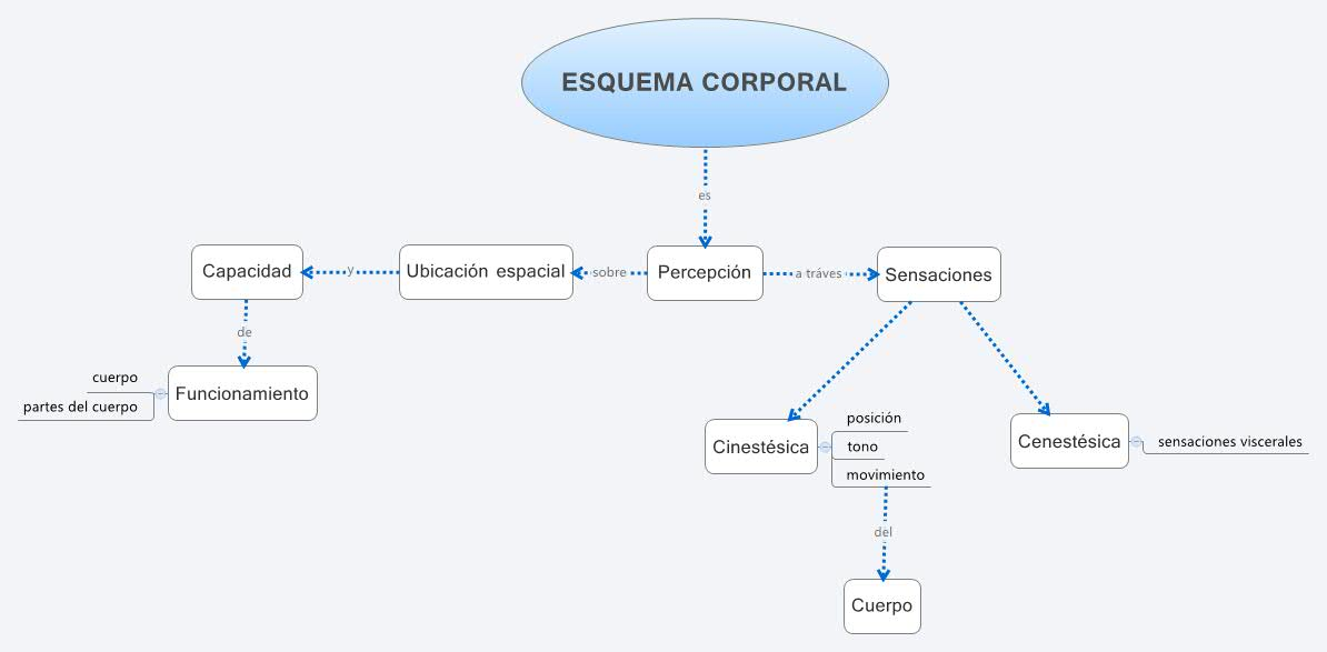 ESQUEMA CORPORAL -- XMind Online Library