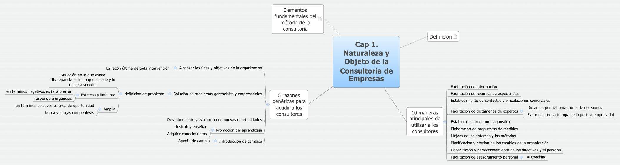 Cap 1. Naturaleza y Objeto de la Consultoría de Empresas