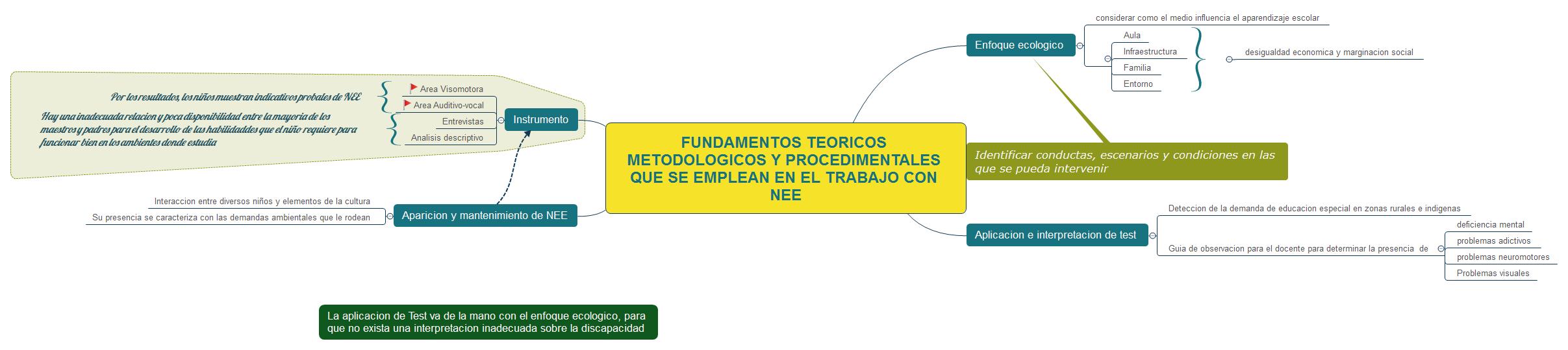 FUNDAMENTOS TEORICOS METODOLOGICOS Y PROCEDIMENTALES QUE SE EMPLEAN EN EL TRABAJO CON NEE
