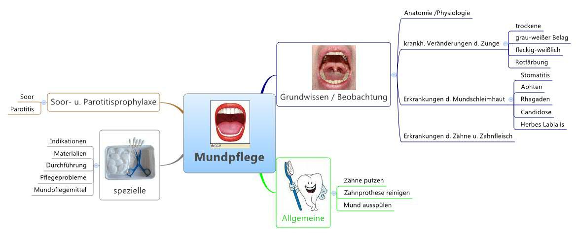 Mundpflege -- XMind Online Library