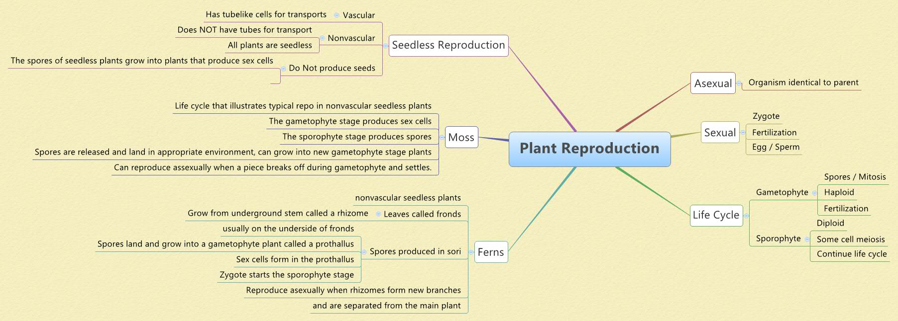 SXgn on Plant Life Cycle Sporophyte