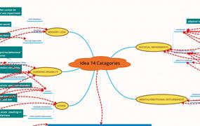 IDEA 14 Catagories