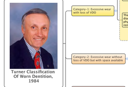 Turner Classification Of Worn Dentition, 1984