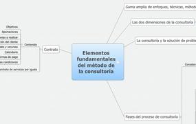 Elementos fundamentales del método de la consultoría