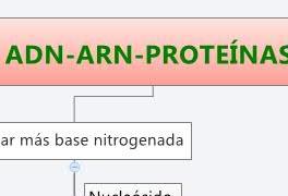 ADN-ARN-PROTEÍNAS.