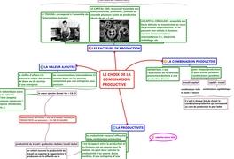 LE CHOIX DE LA COMBINAISON PRODUCTIVE