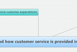 Understand how customer service is provided in business