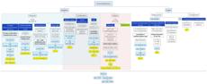 Pediatric Immunodeficiency