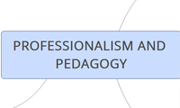 PROFESSIONALISM AND PEDAGOGY