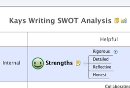 Kays Writing SWOT Analysis