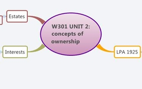 W301 UNIT 2: concepts of ownership